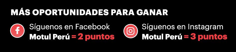 Motul Puntos