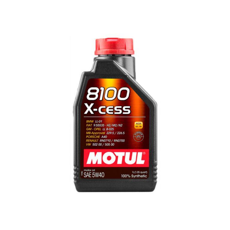8100 ACEITE MOTOR X-CESS 5W40 1L FS